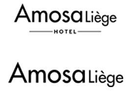 Amosaliege